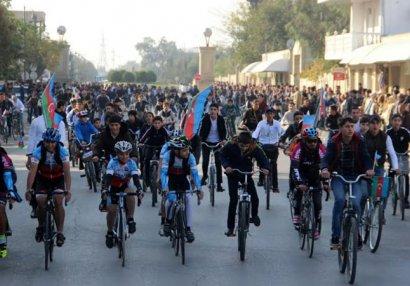 9 noyabr - Dövlət Bayrağı Günü Salyanda qeyd edilib - FOTOLAR