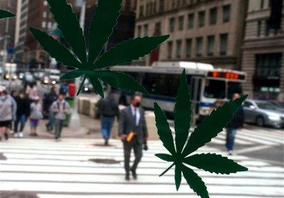 WADA может исключить марихуану из списка запрещенных препаратов