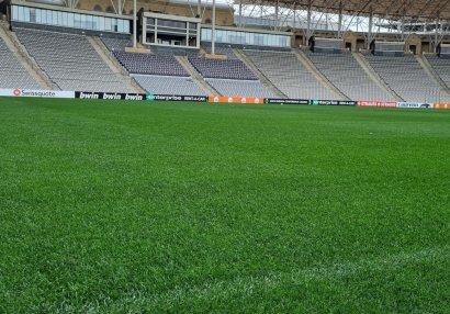 Обновленный газон Бахрамова готов к матчу
